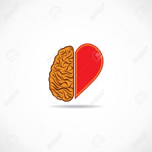 20645114-think-from-heart-and-brain-concept--Stock-Vector